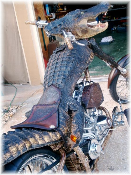 Aligator Shaped bike: 03