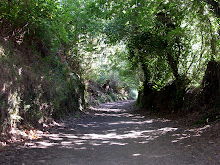 Camino Path for more than 1000 years