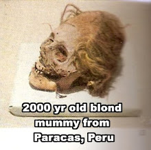 Paracas Mummy - Radio carbon dated to 2000 yrs. old.  Blonde hair and caucasoid skull shape.