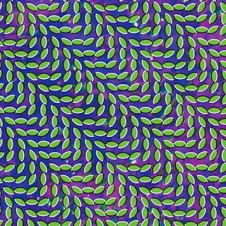 44. Animal Collective – Merriweather Post Pavilion 2009