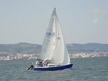 N.V. Oceanus