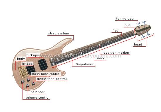 Guitarelectric Guitarpartsanatomyguitar Guru