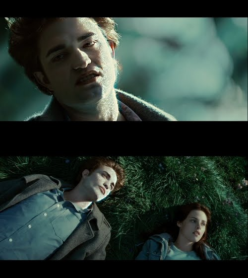 Twilight Vampires vs Twilight Werewolves