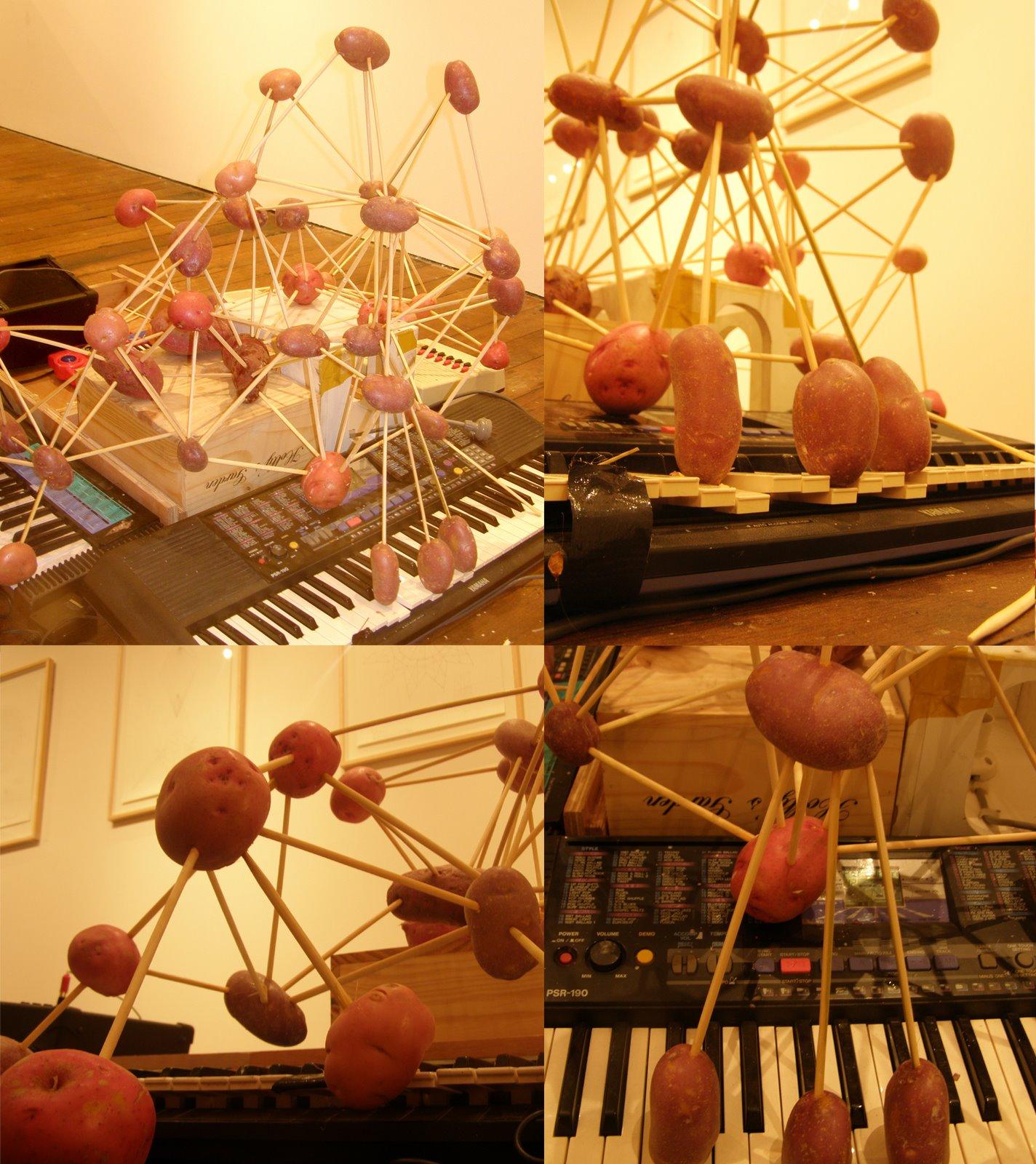 [potato+organ+web.jpg]