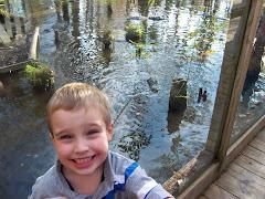 Kayden at the alligator park