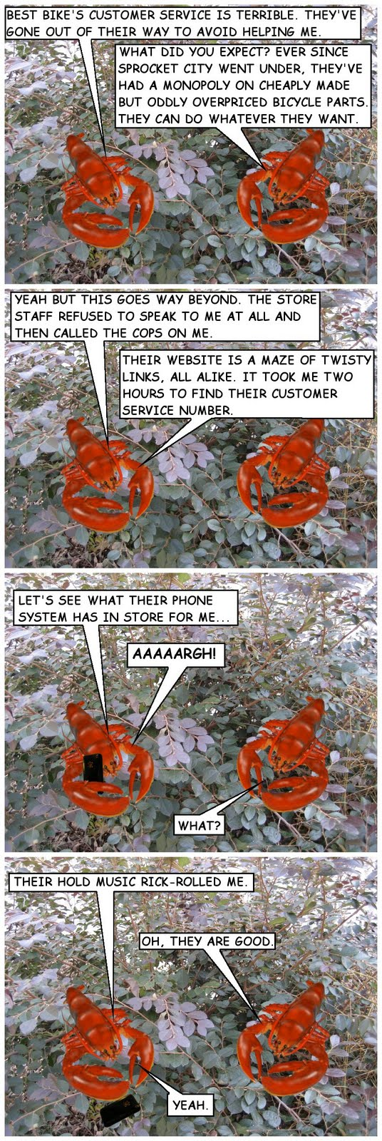 BEST BIKE'S CUSTOMER SERVICE IS TERRIBLE. THEY'VE GONE OUT OF THEIR WAY TO AVOID HELPING ME. WHAT DID YOU EXPECT? EVER SINCE SPROCKET CITY WENT UNDER, THEY'VE HAD A MONOPOLY ON CHEAPLY MADE BUT ODDLY OVERPRICED BICYCLE PARTS. THEY CAN DO WHATEVER THEY WANT.  YEAH BUT THIS GOES WAY BEYOND. THE STORE STAFF REFUSED TO SPEAK TO ME AT ALL AND THEN CALLED THE COPS ON ME. THEIR WEBSITE IS A MAZE OF TWISTY LINKS, ALL ALIKE. IT TOOK ME TWO HOURS TO FIND THEIR CUSTOMER SERVICE NUMBER.   LET'S SEE WHAT THEIR PHONE SYSTEM HAS IN STORE FOR ME... AAAAARGH! WHAT?  THEIR HOLD MUSIC RICK-ROLLED ME. OH, THEY ARE GOOD. YEAH.