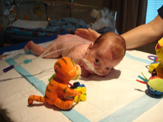Hots Naked Infants Photos Png