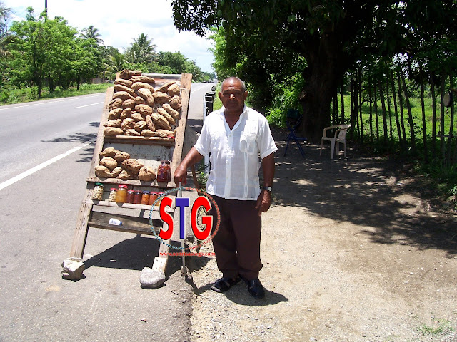 Sweet potato and cashew on the Dominican road.