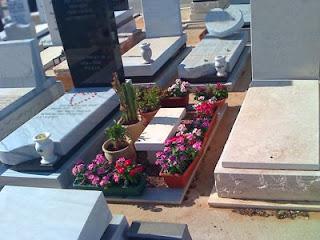 הקמת גינות ואחזקת קברים בבית עלמין