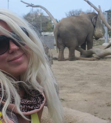 LINA HELLQVIST - Härlig är jorden!: maj 2010