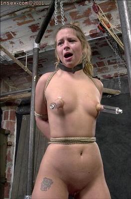 Teen anal 4 2011 - 2 7