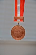 Bronze i 2010