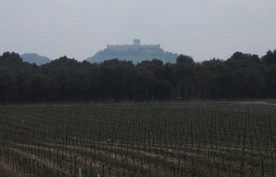 Viñas de Legaris con el Castillo de Peñafiel al fondo