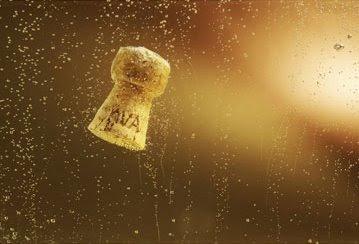 Tap de cava amb bombolles al fons, foto de Blai Carda