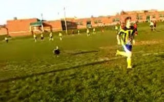 Rogue turkey invades soccer pitch