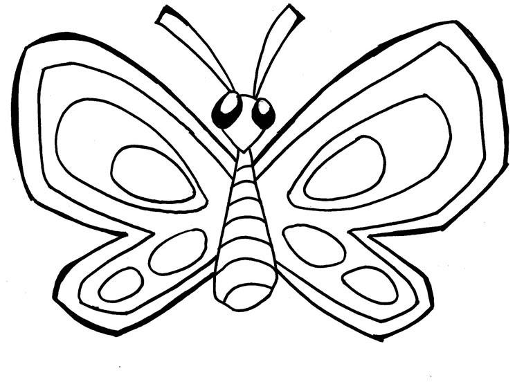 Desenhos De Animais Para Colorir: BORBOLETAS PARA COLORIR. ANIMAIS COLORIR