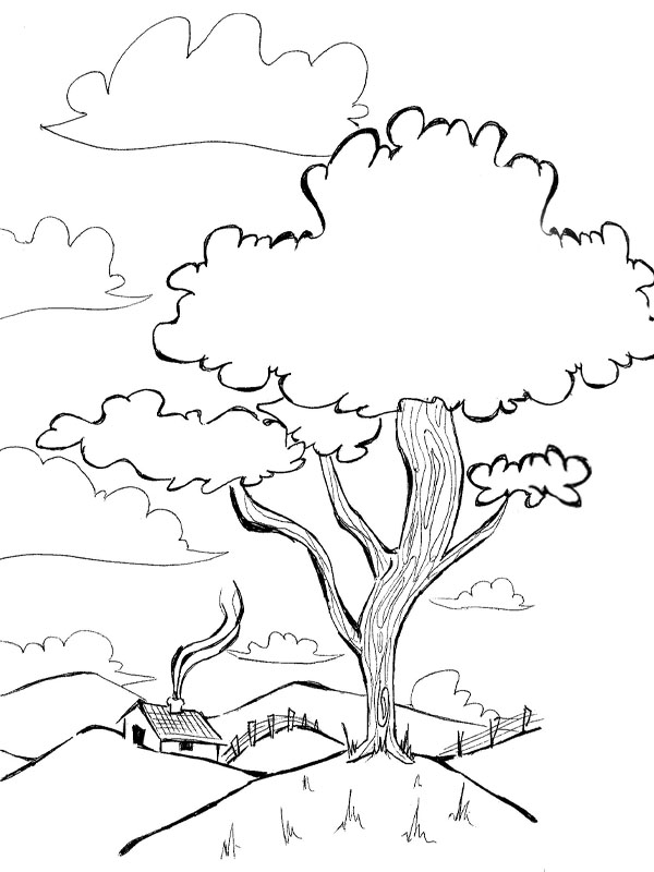Desenho De Natureza Meio Ambiente Desenhos Para Colorir