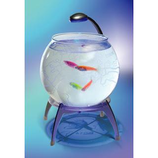 Avatar Fish: 辦公室開心水族箱 ~ 辦公室養魚不稀奇。孵小魚才夠夯!