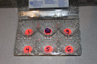egg carton game