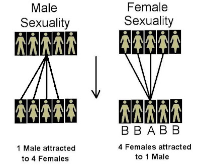http://masculineprinciple.blogspot.ca/2015/03/sex-sells-hypergamy-explained.html