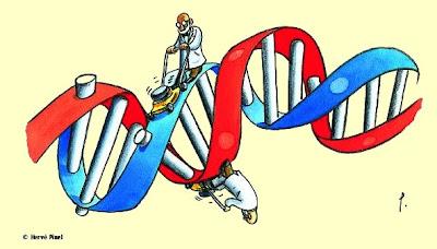 """a17f507a11d3c """"Domingues e Sá (2003) avaliaram que a recepção das idéias de Darwin no  Brasil foi controversa, principalmente aquelas sobre origem e evolução dos  humanos."""