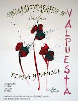 Cartel anunciador | Autor Flores Camín