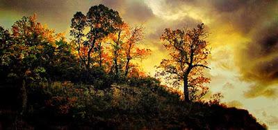 Clic para ver el álbum de Alvar Astúlez sobre el valle de Losa, publicado en Flickr