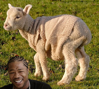 xzibit, sheep in sheep, sheep wearing sweater, i heard you like sheeps