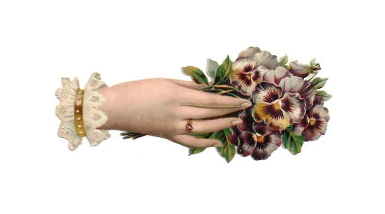 http://1.bp.blogspot.com/_JQFg2GYRO_Q/THaZerCOCsI/AAAAAAAAARM/cE2QRVhygAU/s1600/penny_plain_victorian_scraps_hand_flowers_003.png