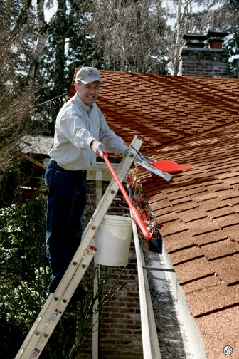 Roof And Gutter Cleaning Tampa Apple Roof Cleaning Tampa