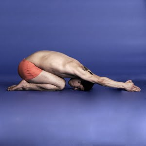 blabble on the 26 poses of bikram yoga that will