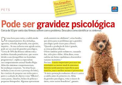 gravidez psicologica em cachorro
