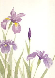 Irises watercolor by Angela Fehr