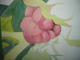 detail of raspberries progress painting