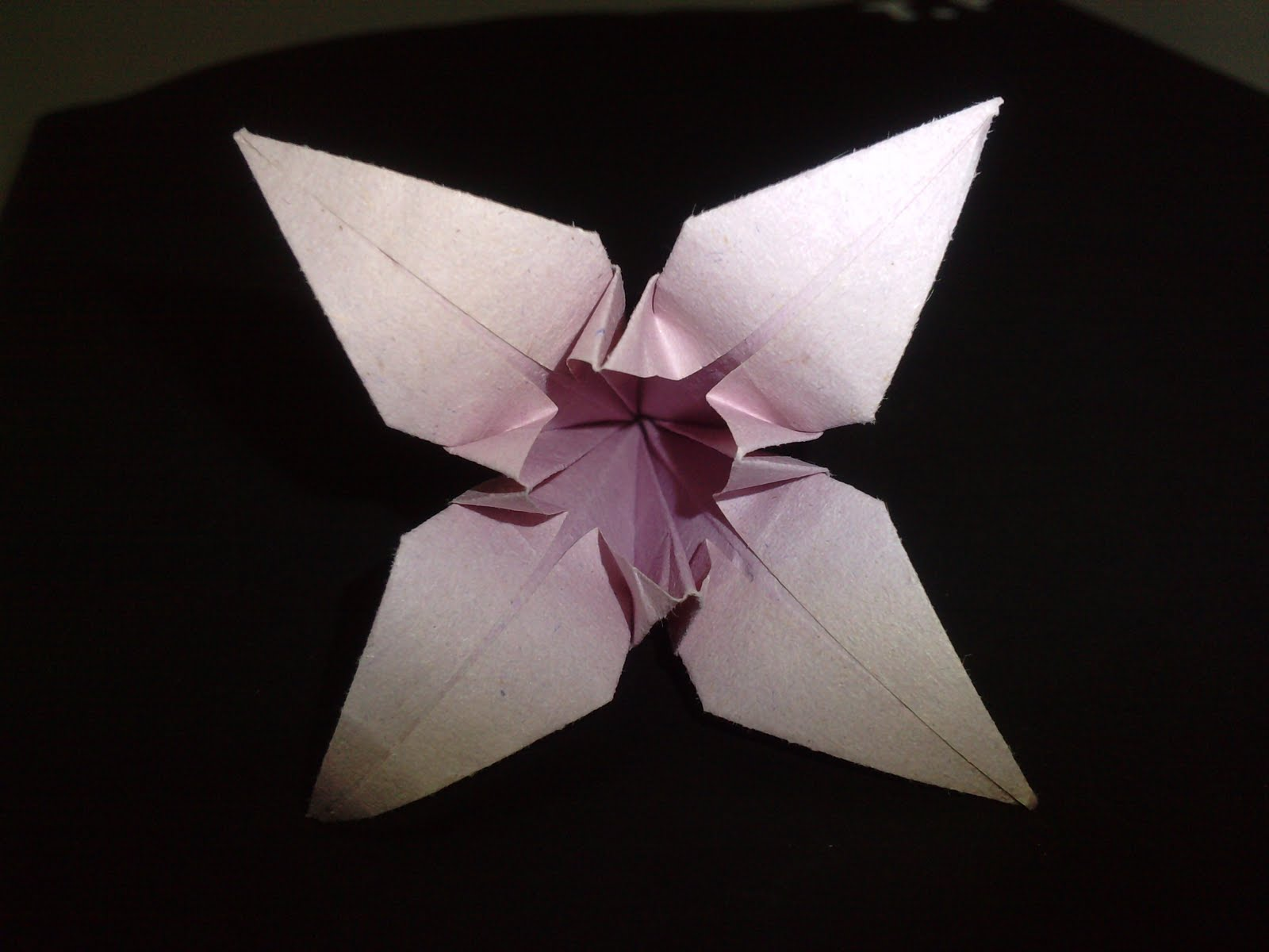 Flores Ris. How To Do 3d Origami. View Original . [Updated ... - photo#33