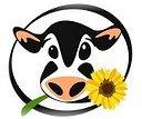 Blogue Vegetariando para Proteção e Defesa dos Animais