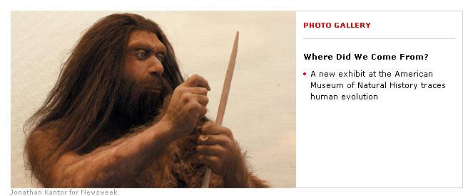 [Neanderthal.jpg]