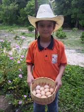 Sebastián mostrando su producción de huevo orgánico
