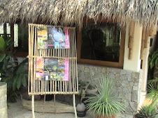 Visita el Jardín Botánico de Acapulco