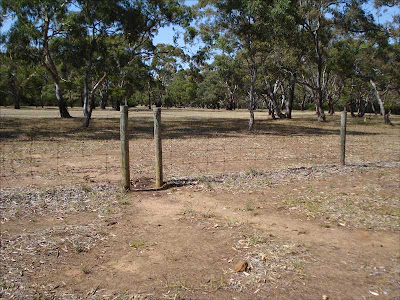 Kangaroo gate_Inverleigh Common