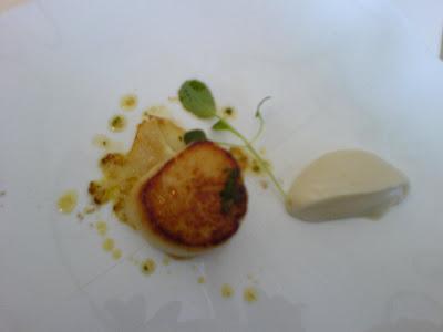 Plancha seared scallop, cauliflower puree, curry oil