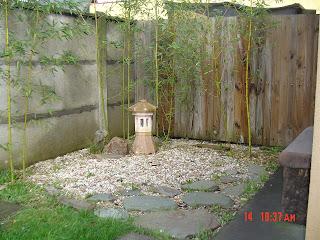 una vista de un pequeno jardin en mi casa lo inicie el