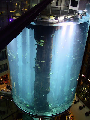 15 Awesome And Modern Aquariums Extraordinary Thing