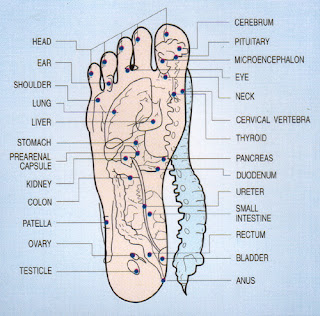 Pleasure points of the foot
