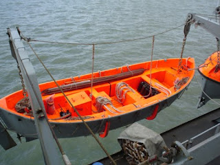 """The Argument of the """"Lifeboat Ethics"""" Essay Sample"""