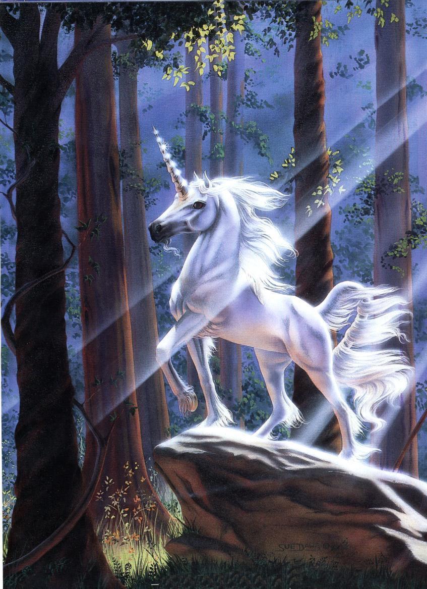 [Unicornio2.jpg]