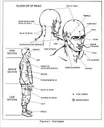 Marines Vital Parts Chart