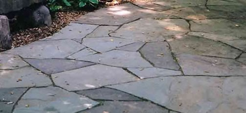 Ornamental pond garden experts flagstone paths for Ornamental pond fish types