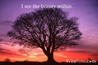 I see the beauty within