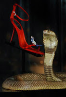 A dangerous year for thieves: the titanic price tag of 62,000 British sterling pounds attached to a pair of ruby, sapphire and diamond-encrusted Rene Caovilla sandals at their London launch in Harrods, prompting the store to adopt the extreme measure of bringing in a live – and potentially deadly – Egyptian cobra to patrol the haute couture shoe counter